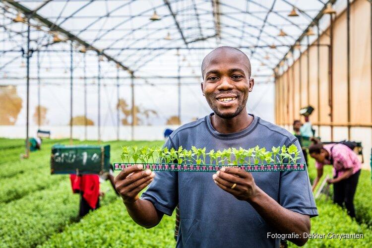 Dekker Chrysanten haalt Tanzaniaanse medewerkers naar Nederland voor vijfdaags werkbezoek