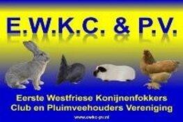 EWKC&PV organiseert haar kleindierententoonstelling bij Neefjes Tulpen in Berkhout
