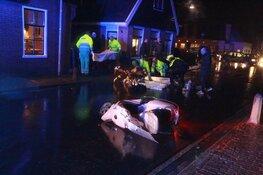 Twee gewonden bij scooterongeval Avenhorn