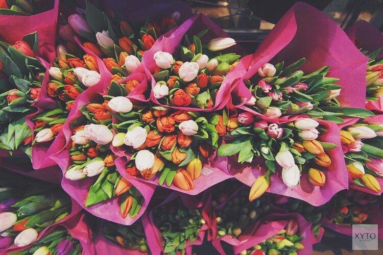 Bloemen leggen bij oorlogsmonumenten