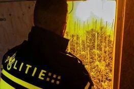 Hennepkwekerij ontdekt in Berkhout
